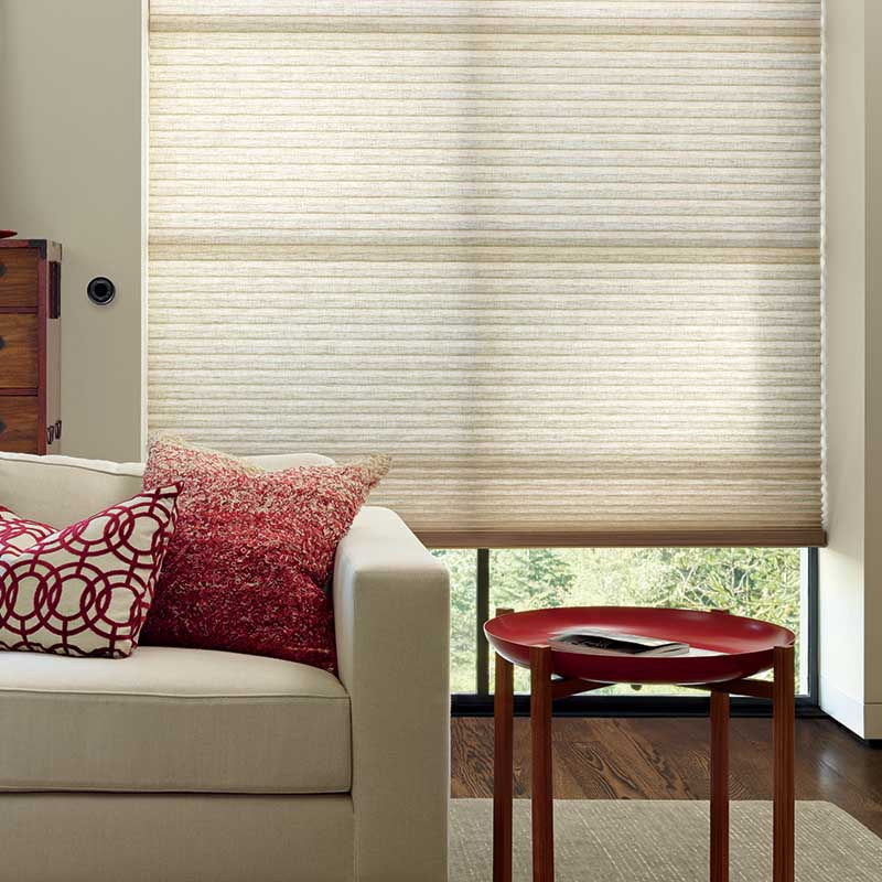 Hunter Douglas Custom Window Treatments & Couches in Centennial, Colorado (CO)